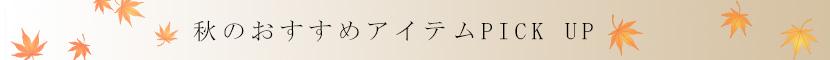 傳濱野秋のオススメアイテム